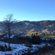 Runde im Schwarzsee