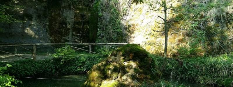Riedrain - Naturpark